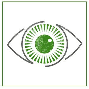 Optometry lawyer college majors
